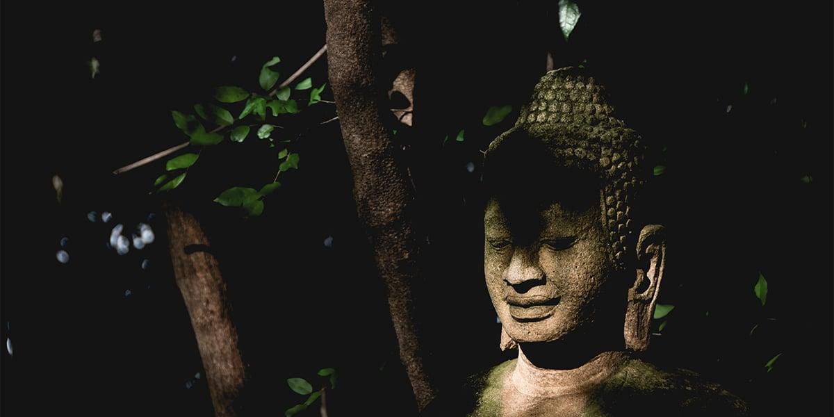 Brutal Buddha men yoga short - Luxe Digital