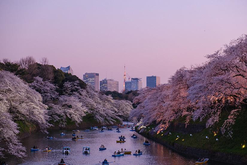 best theatre cities Tokyo - Luxe Digital