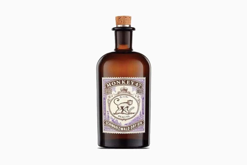 best gin brands monkey 47 dry - Luxe Digital