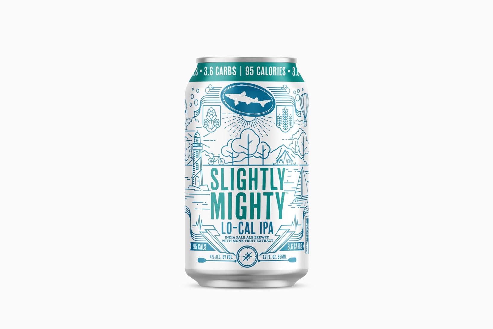 best beer brands dogfish head slightly mighty - Luxe Digital