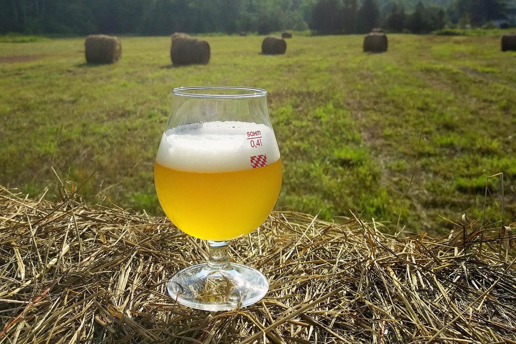 best beer brands west kill brewing - Luxe Digital