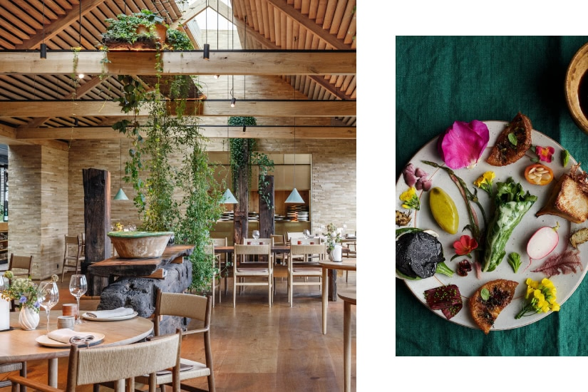 best michelin restaurant noma luxe digital