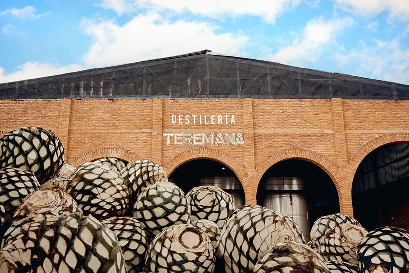 tour por la destilería de tequila teremana méxico - Luxe Digital
