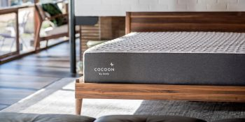 Cocoon By Sealy Mattress Review: A Decision You Won't Have To Sleep On