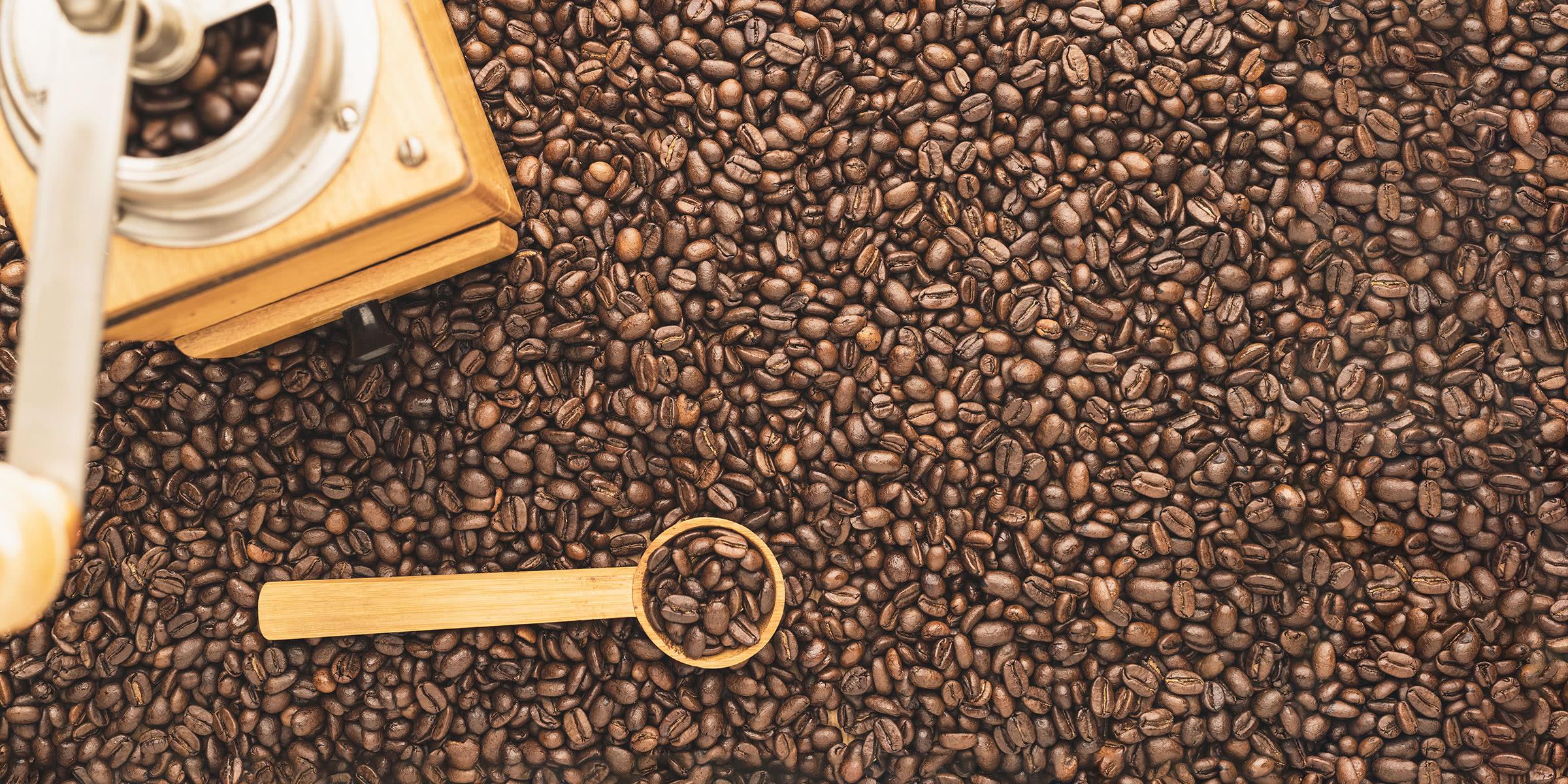 best coffee grinders review - Luxe Digital