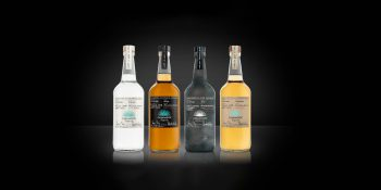 casamigos tequila bottle price size Luxe Digital