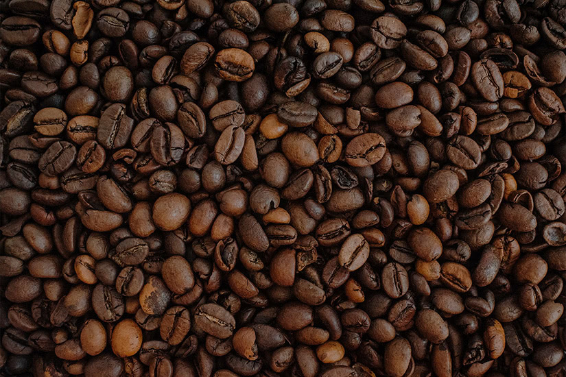 how to use French press coffee beans luxe digital