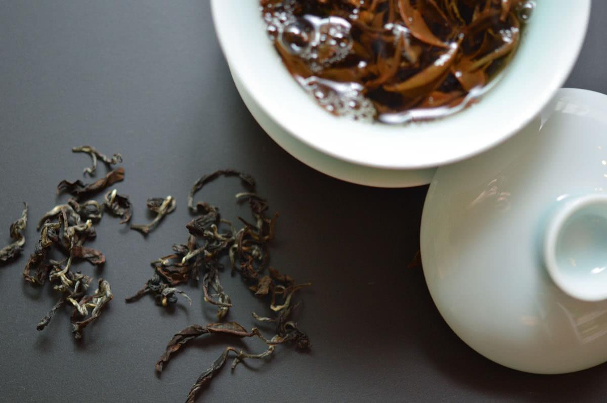 Camellia Sinensis Tea ceremony